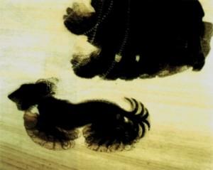 Giacomo Balla - Dinamismo di un cane al guinzaglio, 1912