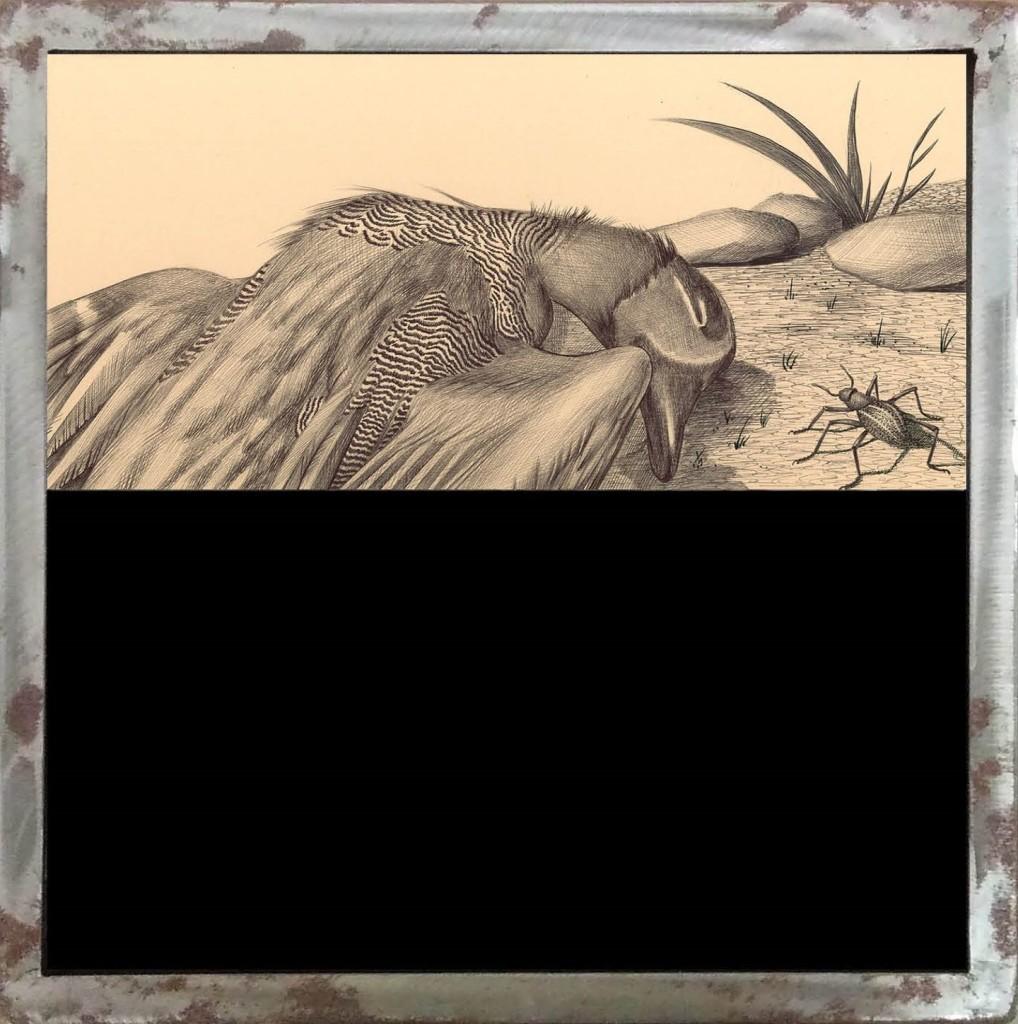 MORTE Anatra vivaAnatra morta - Penna biro su carta applicata su legno con vetrocamera e acqua colorata, 40x40 cm, 2014